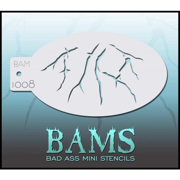 BAM1008 2