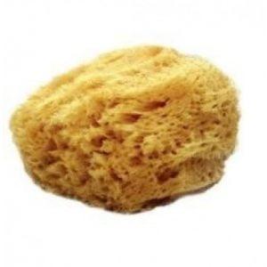 Mehron Natural Sea Sponge