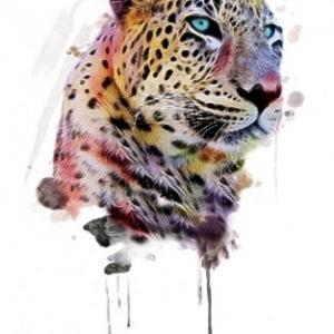 Temporary Tattoo TH-101 Cheetah Colour